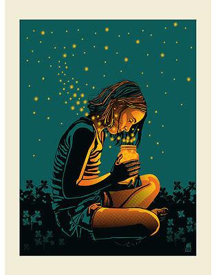 Dave Matthews Band Art Poster Print Bristow VA Fireflies Signed & Numbered #300