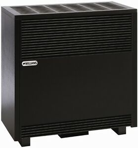 Vented Gas Heater Ebay