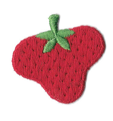 Strawberry - Fruit - Summer - Snack -  Iron On Applique Patch