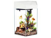 Fish R Fun LED Hexagonal Tank 21.6 Litre