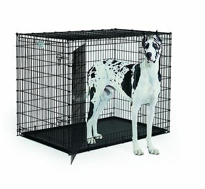 XXL Dog Crate Double Door Extra Large Kennel Cage Metal Plastic Tray Big 54 Inch