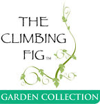 The Climbing Fig™