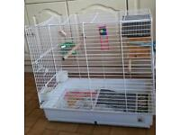 Parrot budgie's cage for sale