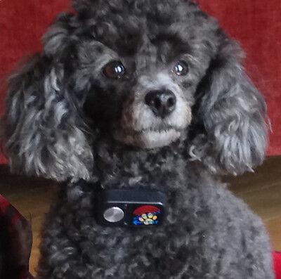 MS-4 Ultrasonic Pet Collar for Power Pet Doors FACTORY DIRECT From HIGH TECH -