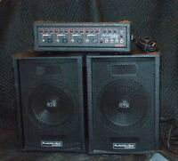 100W Portable PA System. Great for gigs!