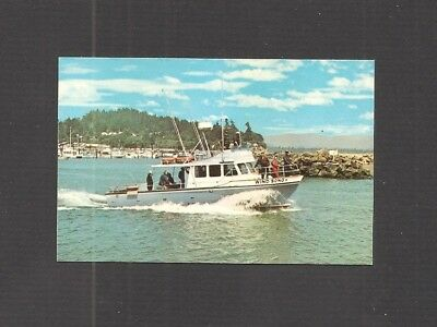 "BUSINESS CARD:  ""WIND SONG"" - CHARTER FISHING BOAT - ILWACO, WASHINGTON"