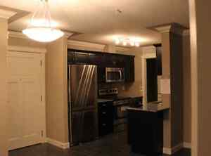 Luxurious 2 Bedroom Condo for rent in Northeast Edmonton! Edmonton Edmonton Area image 6