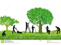 Garden service and maintenance tip top, tidy up, neat & clean