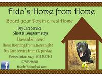 Fido's Home from Home Dog Boarding
