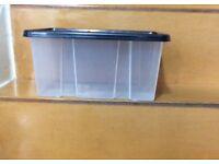 Storage plastic box with black lid