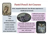 Adult Pastel Pencil art courses for beginners