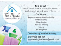 Great cleaning and ironing service