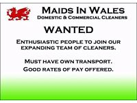 Domestic cleaning staff wanted