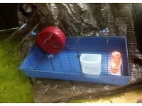 Indoor Rabbit hutch, blue plastic base feeding and water station, large wheel