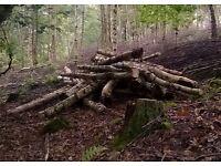 Nidderdale Log Sales. Quality seasoned logs for all fires, log burners etc delivered free locally.