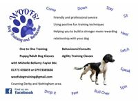Woofs! Dog Training, one to one, puppy classes, agility and behavioural visits