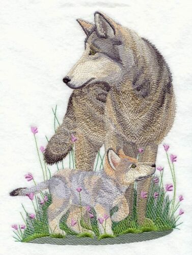 Embroidered Sweatshirt - Spring Wolf C5504