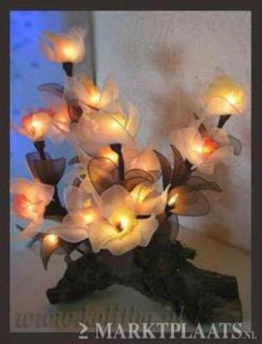 ≥ Decoratie- sfeerverlichting KALITHA.NL bloemen verlichting ...