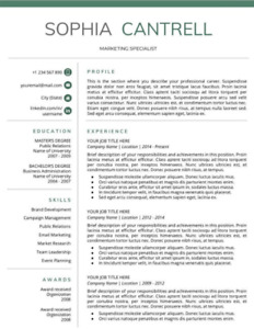 Resume Writing Services Edmonton Alberta Pjeterbudi Edu Com