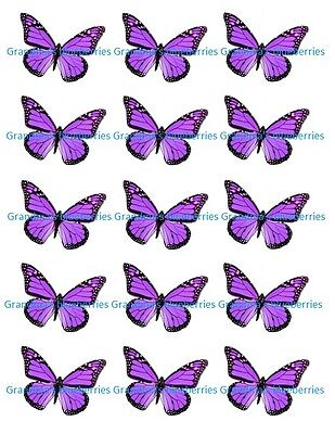 Purple Cake Decorations (Edible Purple Floral Butterfly Wedding Cake Toppers- Cake Decorations set of)
