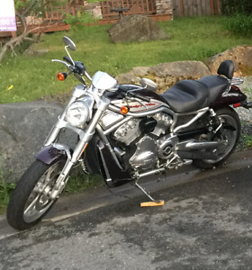 2006 Harley Street Rod (VRSCR) Black Cherry