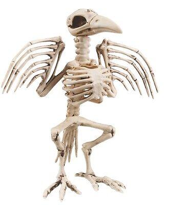 Horror Vogelskelett KRÄHE Tierskelett 32 cm Halloween Skelett party Deko