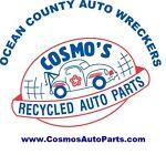 Cosmos Auto Parts