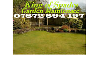 Garden Maintenance - Grass cutting, Hedge cutting, Turfing Local Gardener for Cardiff & Vale of Glam