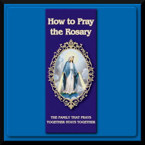 """LARGE PRINT HOW to PRAY the ROSARY Illustrated Luminous Mysteries Pamphlet 4x9"""""""