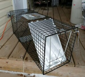 Animal Traps Kijiji Free Classifieds In Ontario Find A