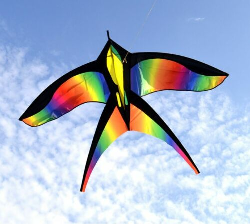 Bird Kite - Kite for Kids - Kite for Adults - Rainbow Colored - Easy to fly