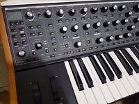 Moog Sub 37 (Tribute Edition)