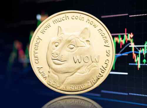Dogecoin Doge Coin Crypto Currency Collectible Gold Commemorative Collector Gift