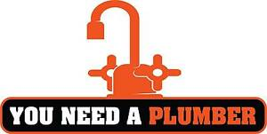 You Need a Plumber Revesby Bankstown Area Preview