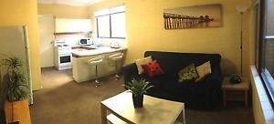 Large 1 Bedroom Unit, Fully Furnished, Great Location, Private Figtree Wollongong Area Preview