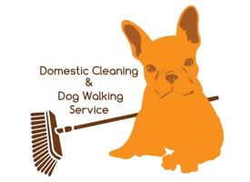 Romez dog walking and domestic cleaner services