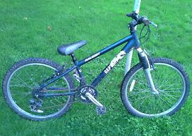 Raleigh rapture child's bike