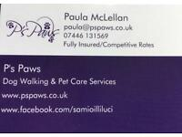 Dog walker/Pet Care/Pet Taxi 🚕