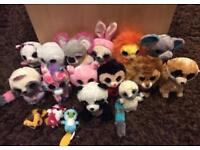 Ty Beenie Boo Collection