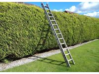 Two Section Heavy Duty Ladder