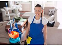 Look no further for all your Domestic and Commercial Cleaning needs!