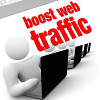 I send 600-700 daily real traffic to your website for one month