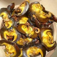 Nigerian/African Fine Dishes at your service and