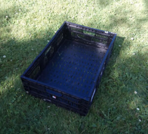 Garden Drying Trays for Fruits or Vegetables