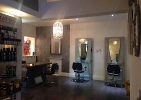 Style Director, Stylist and Assistant/apprentice vacancies in busy salon