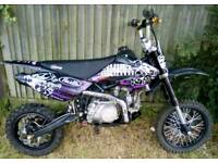 CAN DELIVER Pit Bike STOMP 140cc CRF70 sized Pitbike Ready to ride! FAST & POWERFUL VGC