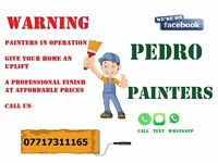 PEDRO PAINTERS - Painting services - Female painter also available