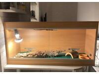 Reptile Verarium