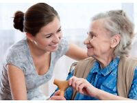 Companion/Carer for elderly lady in Solihull area. Experienced in Dementia and Alzheimer