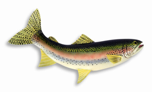 "Hand Painted 18"" Large Rainbow Trout Game Fish Wall Mount Decor Sculpture FA83B"
